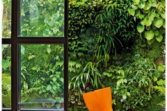 BGreenpark - Green Wall_gallery16