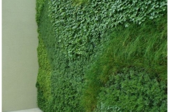 BGreenpark - Green Wall_gallery7